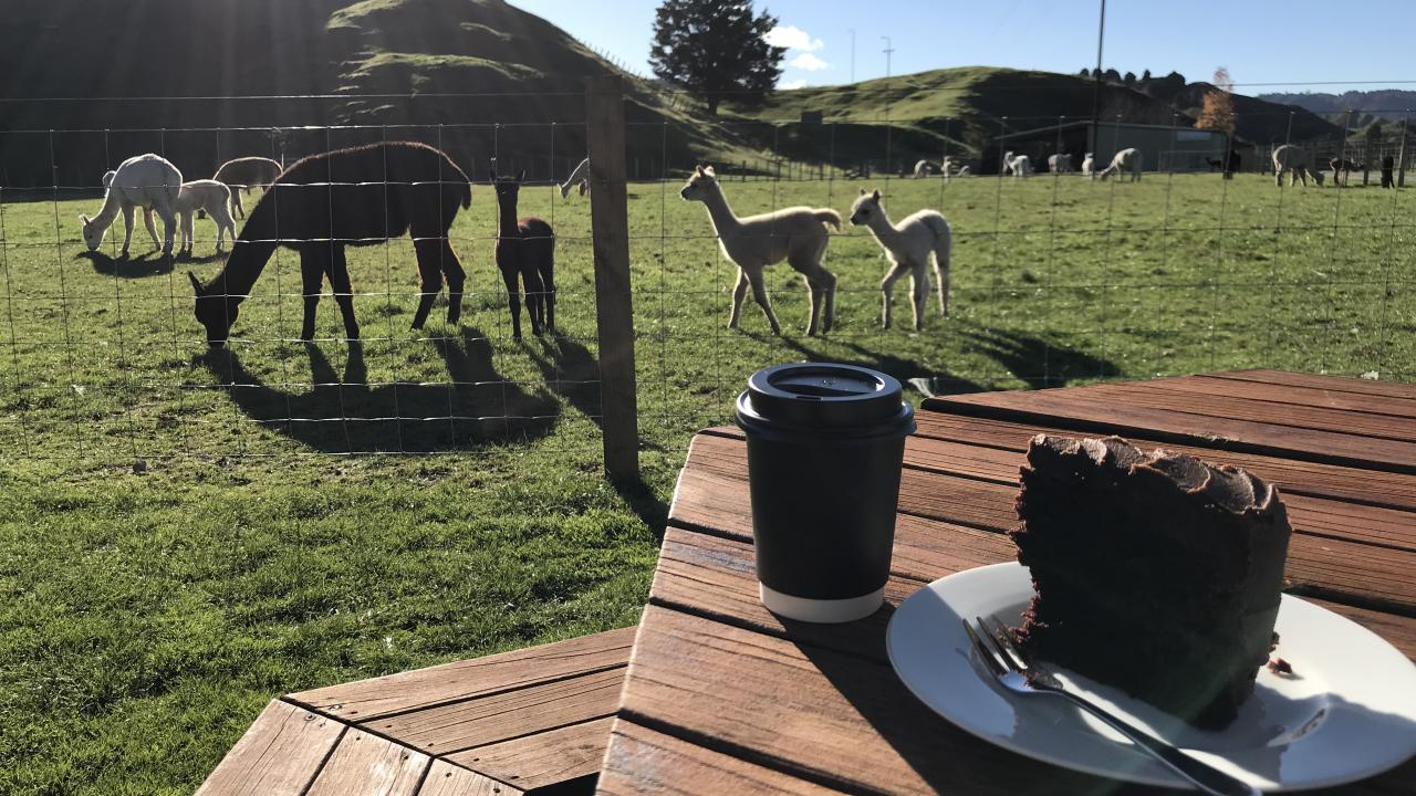 Relax with a coffee and enjoy the views