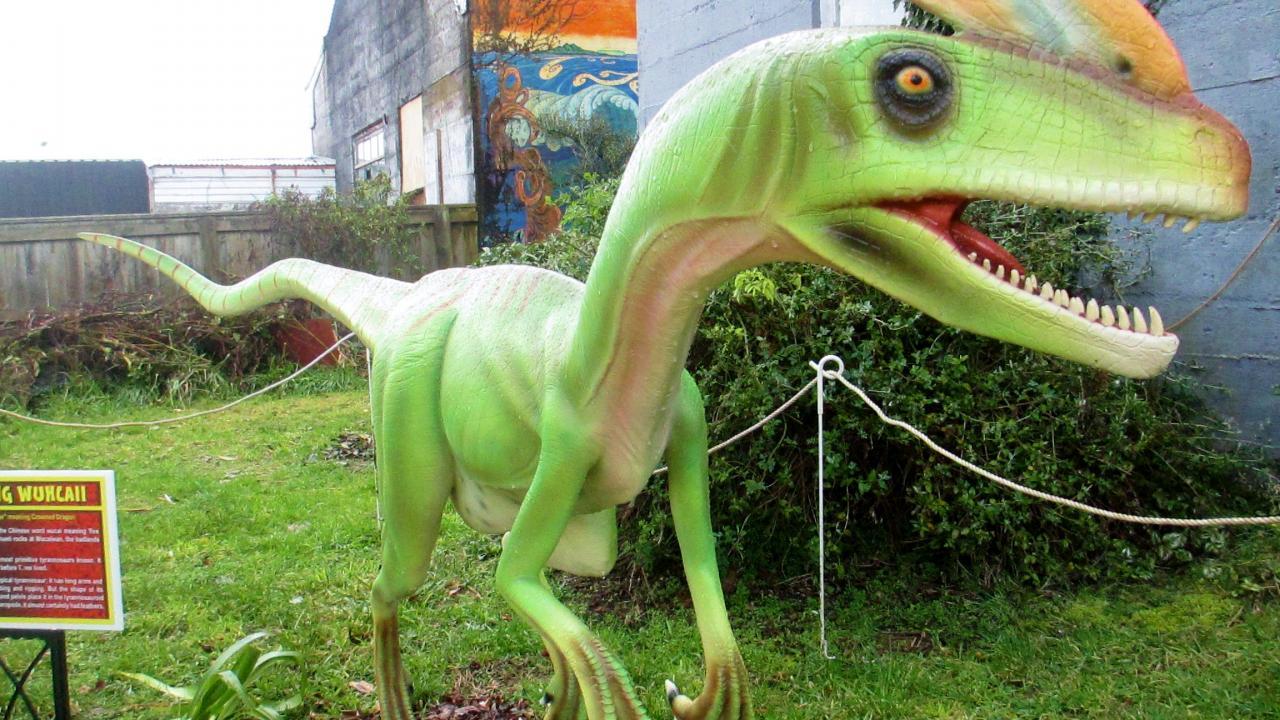A Guanlong dinosaur displayed in our new dinosaur garden.