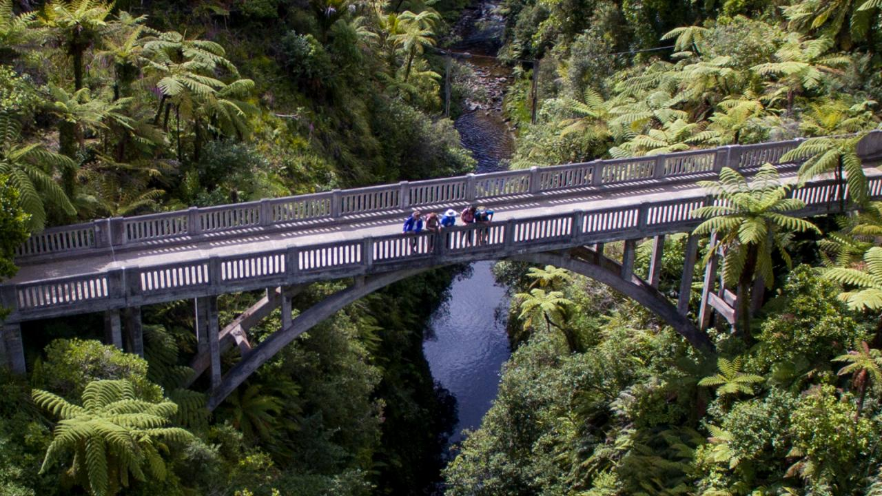 The Bridge to Nowhere spans the Mangapurua Stream in Whanganui National Park, North Island, New Zealand with the roads to and from long swallowed by the surrounding bush.