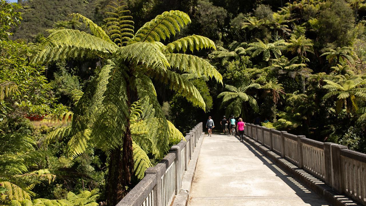 Adrift Tongariro: Whanganui River guided canoe trip - Bridge To Nowhere
