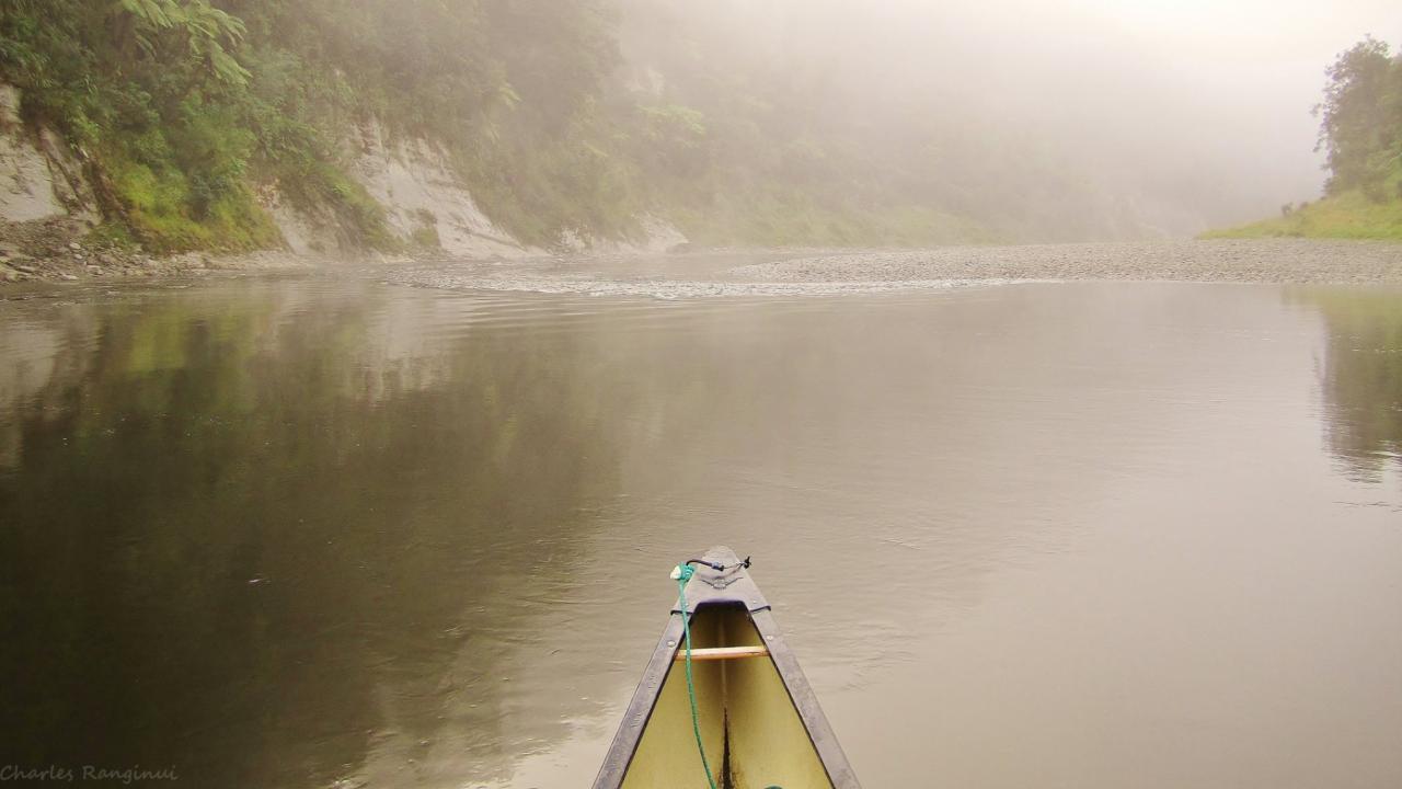 Peaceful morning on the Whanganui River