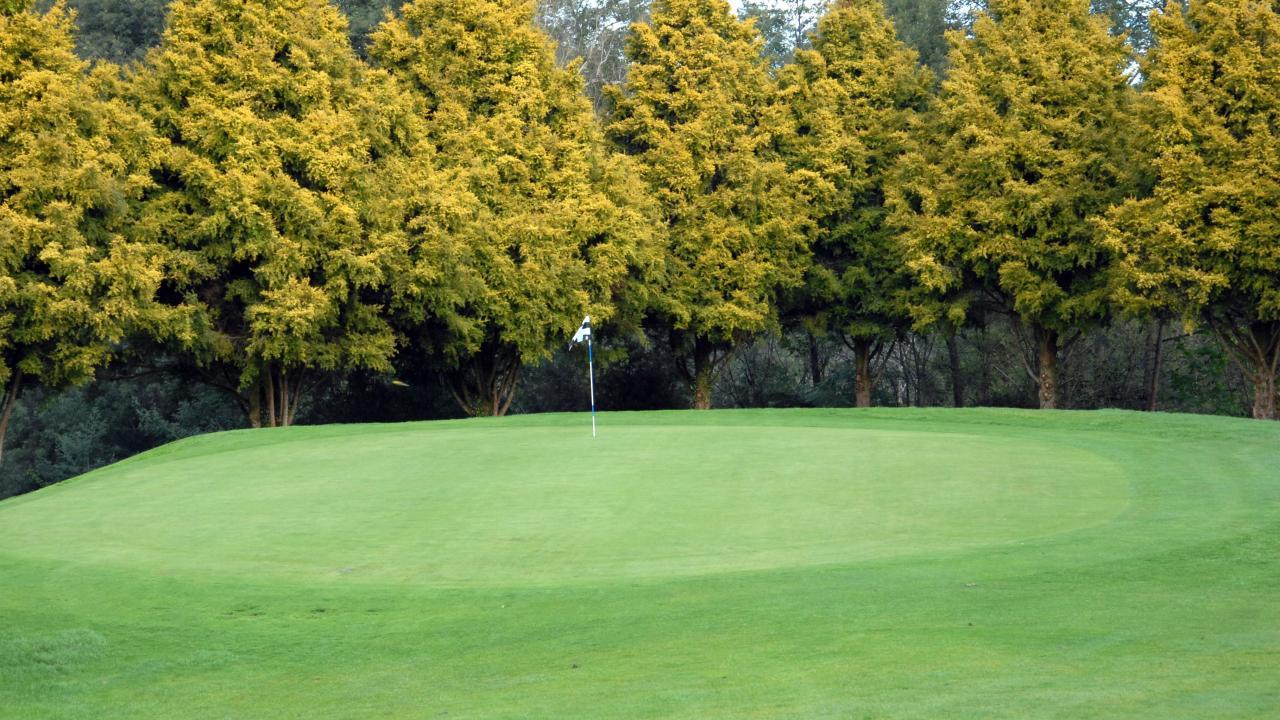10th green with golden totara backdrop