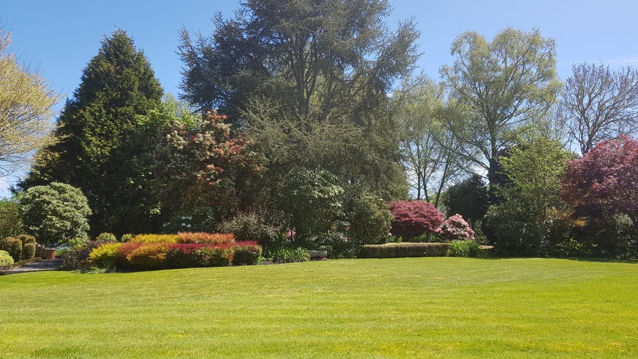 Omaka Lodge - a garden view.