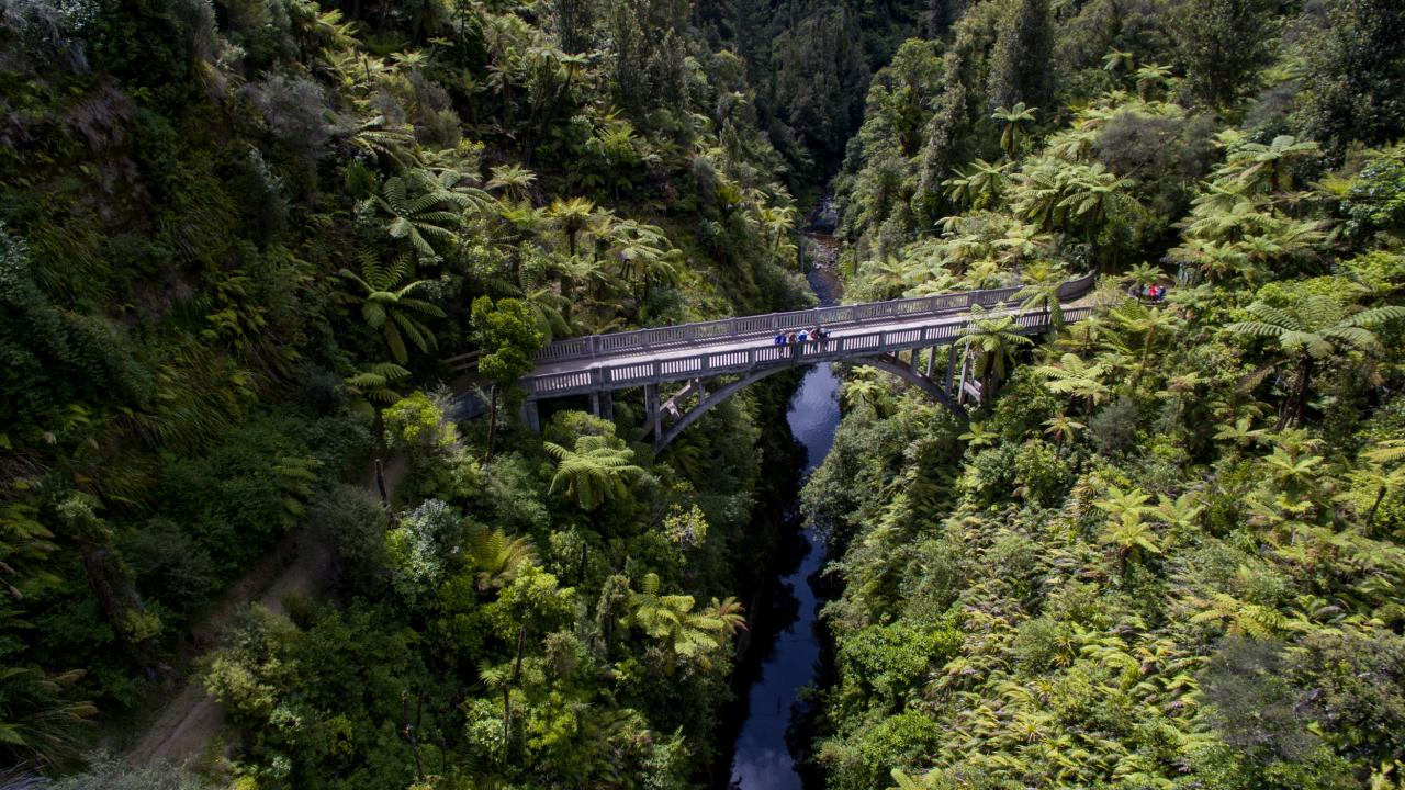 Enjoy a guided bush walk to the Bridge to Nowhere over the Mangapurua Stream and hear poignant stories of abandoned farming efforts in this valley.
