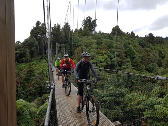 Maramataha Bridge, Pureora Forest