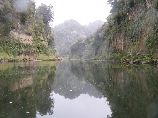 The Drop Scene, Whanganui River