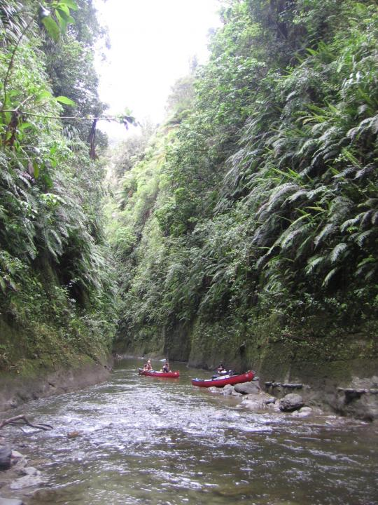 Exploring the Whanganui River