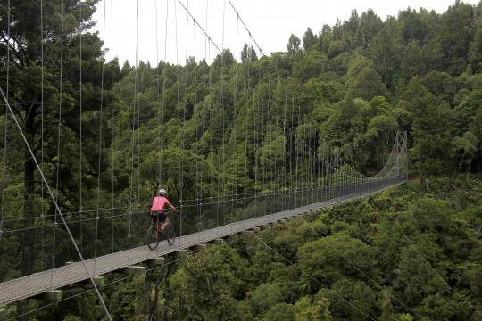 Maramataha suspension bridge