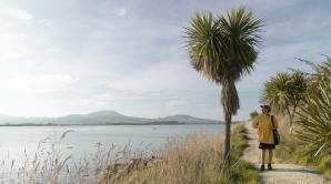 Māori Pa Tour - Ōtepoti   Dunedin New Zealand official website