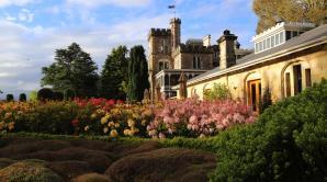 Larnach Castle Gardens - Ōtepoti | Dunedin New Zealand official website